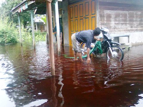 dampak banjir