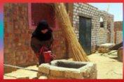 Desa Internasional di Mesir