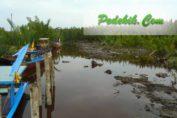 pengolahan limbah desa