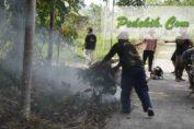 pengolahan sampah desa