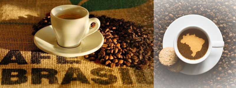 keunikan kopi brazil